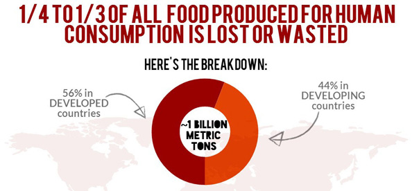Food waste and food loss